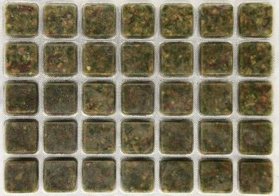 croppedimage400281-Goldfish-2077-2